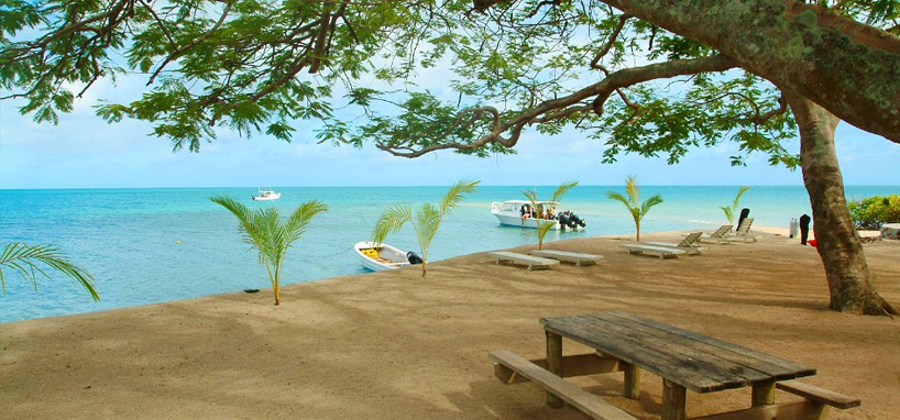 Beach in Diving Resort Fiji
