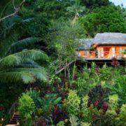 Fiji Honeymoon Treehouse Package