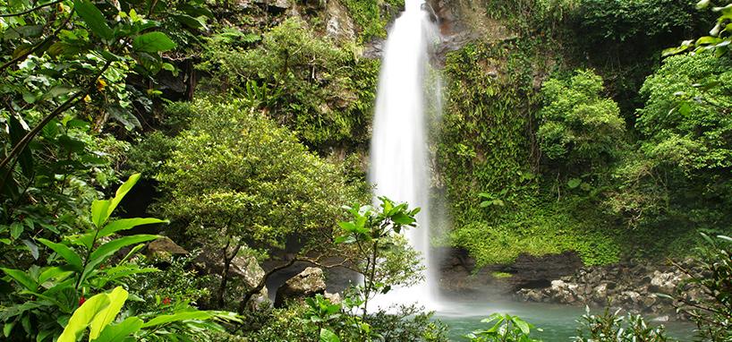 Fiji Honeymoon Waterfalls in Taveuni