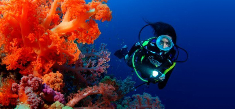 Fiji Diving Vacation