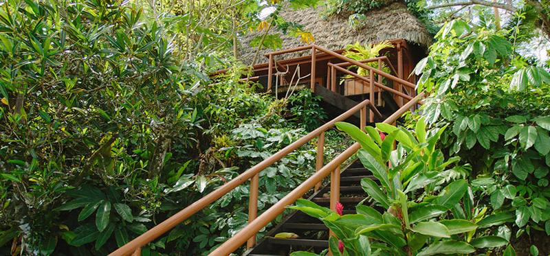 Garden Tropical Bure Exterior