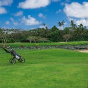Golf in Luxury Fiji Resort