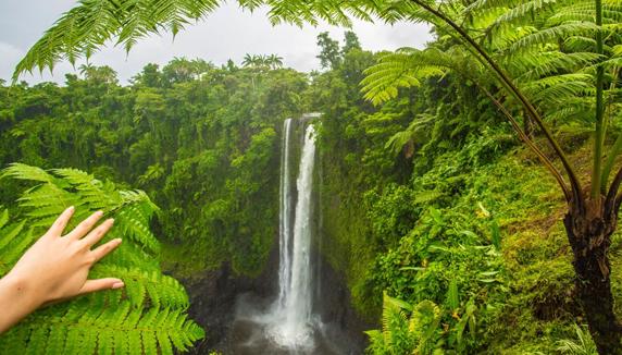 Fauipisa Falls Samoa Vacation