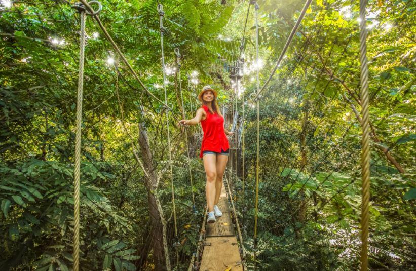 Falealupo Rainforest Reserve